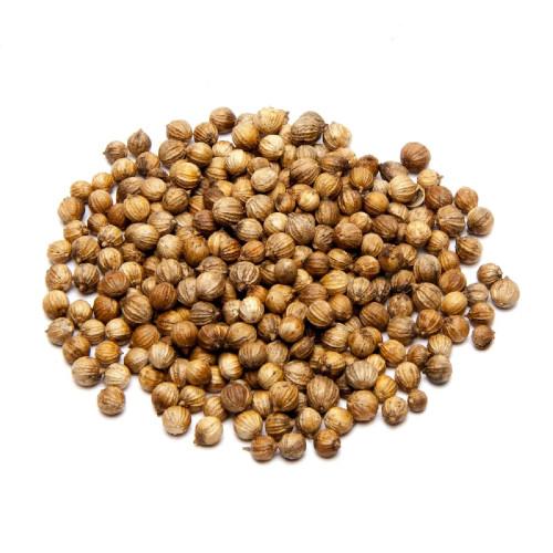 coriandre en graine bio